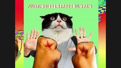 Justin Bieber frappe un fan !