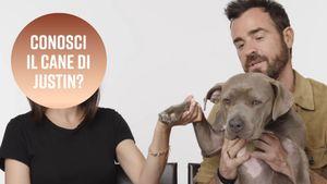 Quanto è carino il cane di Justin Theroux?